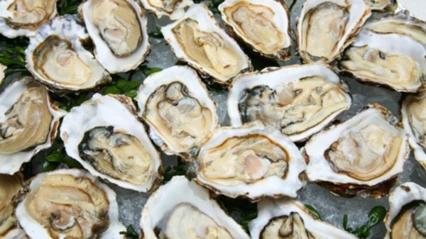 1458895695-6252-ters-and-other-raw-shellfish